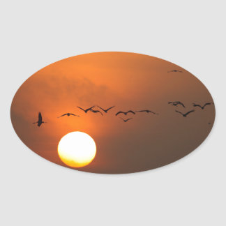 Sunrise with flocks of flying cranes oval sticker