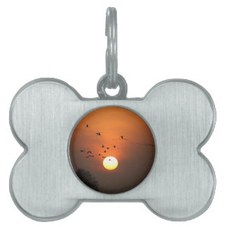 Sunrise with flocks of flying cranes pet tag