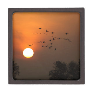 Sunrise with flocks of flying cranes premium gift boxes