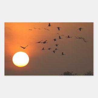 Sunrise with flocks of flying cranes rectangular sticker