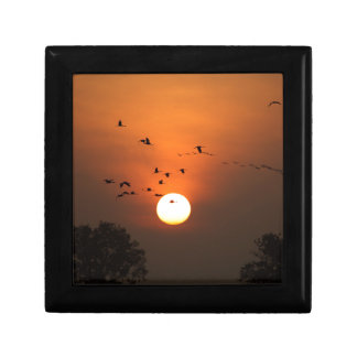 Sunrise with flocks of flying cranes small square gift box
