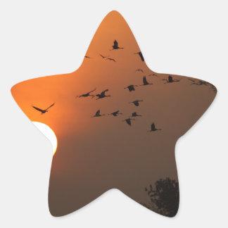 Sunrise with flocks of flying cranes star sticker