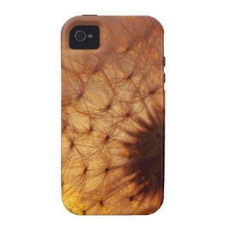 Sunset and Dandelion Case-Mate iPhone 4 Cover