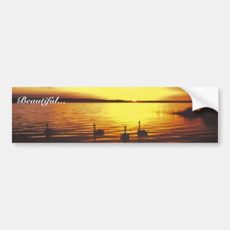 Sunset and Swans Bumper Stickers