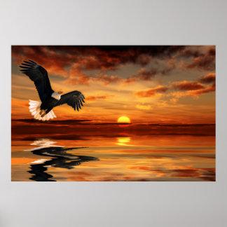 Sunset-Artist-Concept-Ver-1 Poster