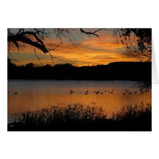Sunset at Lake Scott State Park - Geese on Lake Card