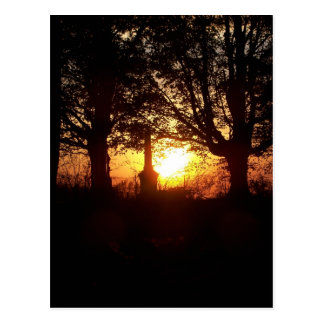 Sunset at the Cemetery Postcard