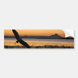Sunset at the lake bumper stickers