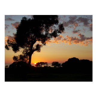 Sunset at Torrey Pines Postcard