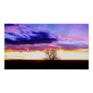 Sunset beyond the Tree_ Print