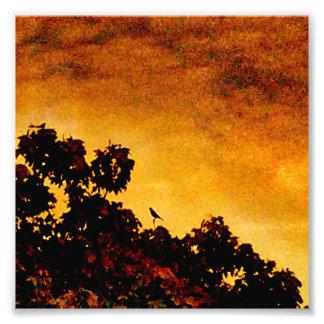 SUNSET BIRD GOLDEN PHOTO ART