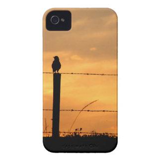 Sunset Birds Case-Mate iPhone 4 Case