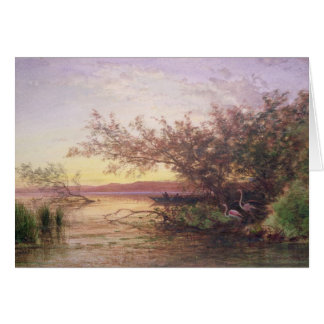 Sunset, Camargue Card