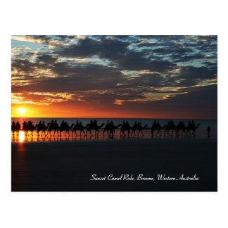 Sunset Camel Ride, Broome, Western Australia Post Cards
