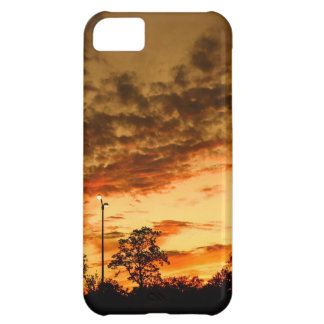 Sunset iPhone 5C Covers