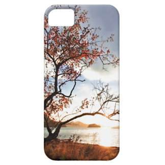 Sunset case iPhone 5 covers