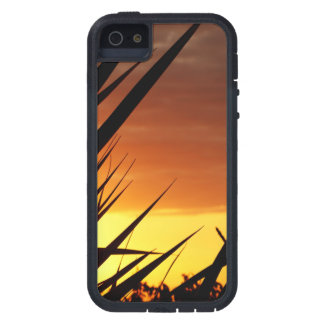 Sunset Cover For iPhone 5/5S