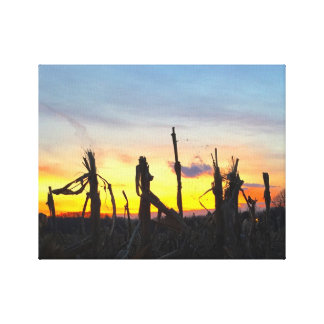Sunset Corn Field Canvas Print