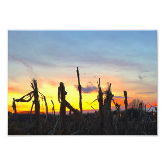 Sunset Corn Field Photo Print