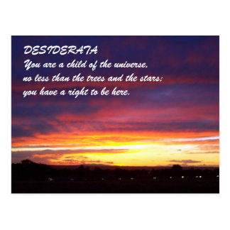Sunset DESIDERATA Postcard