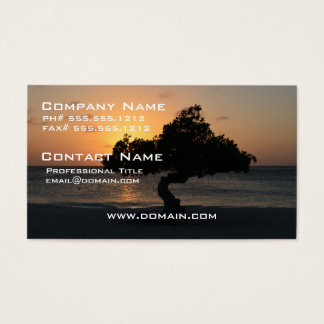 Sunset Divi Divi Tree Business Card