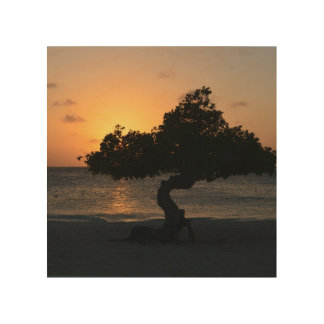 Sunset Divi Divi Tree Wood Wall Decor