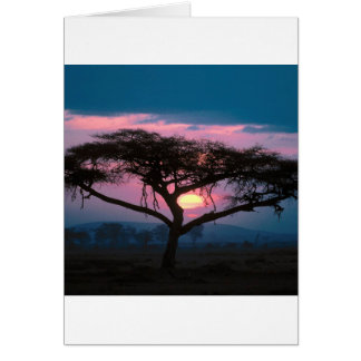 Sunset East African Card
