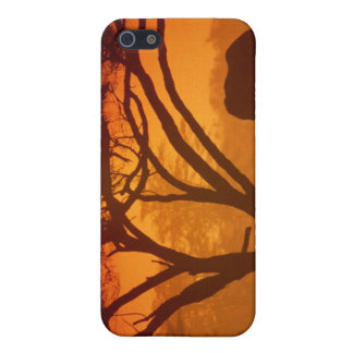 Sunset Elephant Cover For iPhone 5
