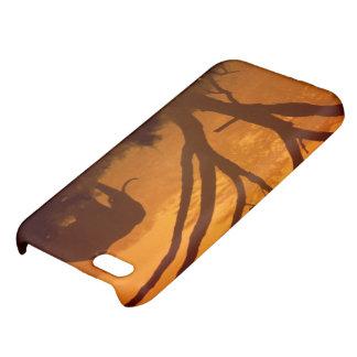 Sunset Elephant iPhone 5C Cases