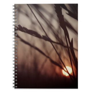 Sunset field Photo Notebook (80 Pages B&W)
