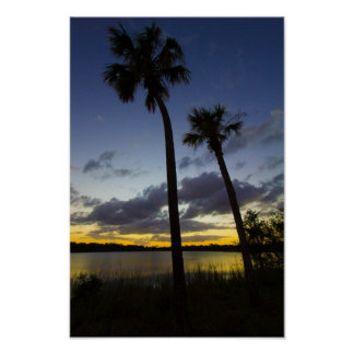 Sunset, George Lestrange Preserve, Fort Pierce, FL Poster