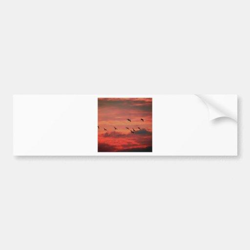 Sunset Hibernate Bumper Stickers