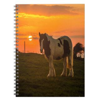 Sunset Horse Notebook