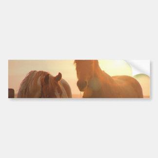 Sunset Horses  Bumper Sticker