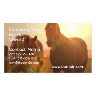 Sunset Horses  Business Card