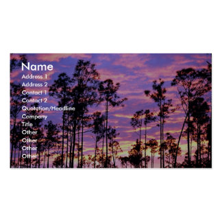Sunset in Everglades National Park, Florida, U.S.A Business Card Template