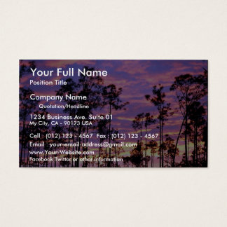 Sunset in Everglades National Park, Florida, U.S.A Business Card