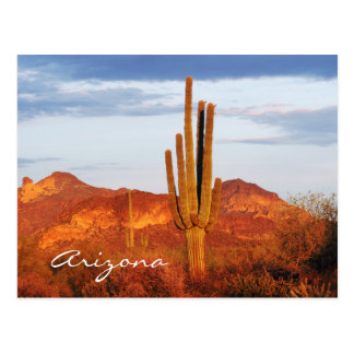 Sunset in the East Valley Arizona Post Card