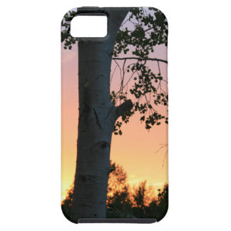 Sunset in the Trees iPhone 5 Covers