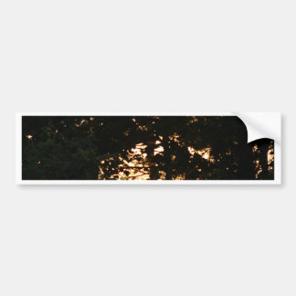 Sunset in the Woods Bumper Stickers