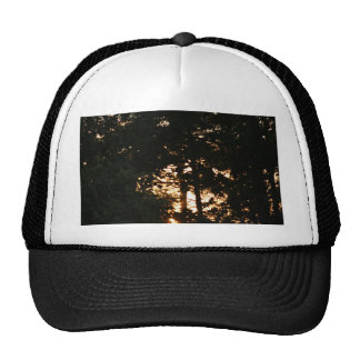 Sunset in the Woods Trucker Hats