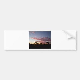Sunset in Western Australia - 11 Bumper Sticker
