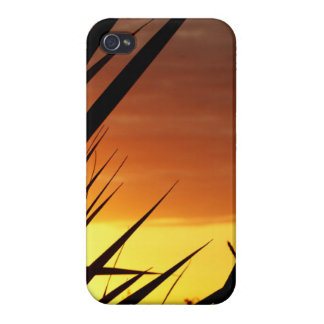 Sunset Covers For iPhone 4
