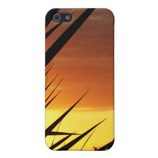 Sunset iPhone 5/5S Case