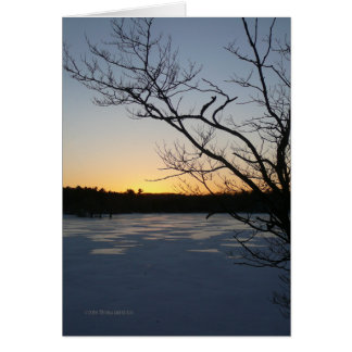 Sunset January 28th Greeting Cards