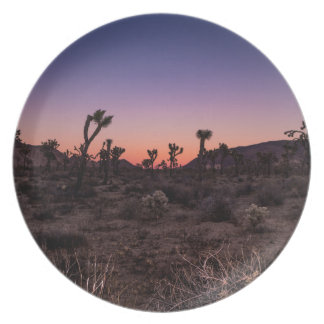 Sunset Joshua Tree National Park Plate