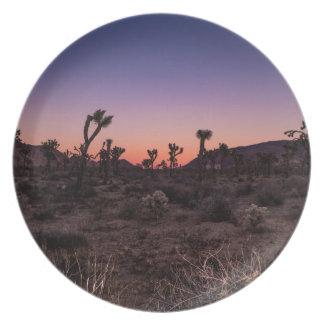 Sunset Joshua Tree National Park Plates