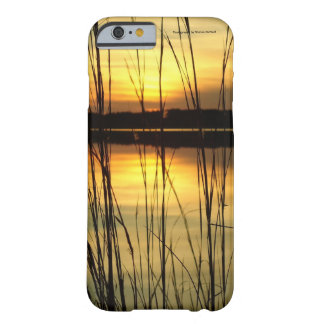 Sunset lake Cell Phone and Ipad case