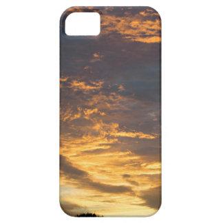 Sunset landscape. iPhone 5 cases