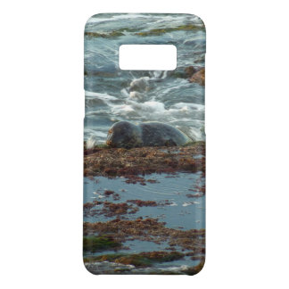 Sunset Lit Harbor Seal I at San Diego Case-Mate Samsung Galaxy S8 Case
